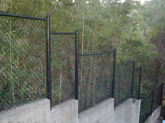 Black vinyl chain link mounted on a retaining wall. Black chain link disappears into the foliage better than green chain link
