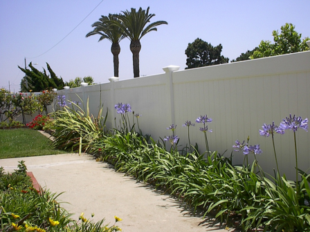 Vinyl privacy fence installed in Torrance CA.